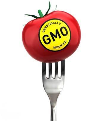 Список товаров с ГМО составлен не Гринпис