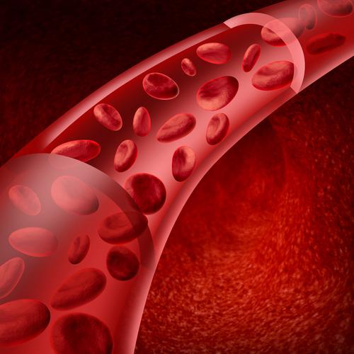изображение крови: